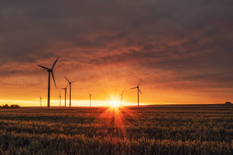 Secteur éolien énergie